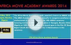 Africa Movie Academy Awards (AMAA) 2014