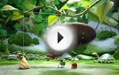 Sweet Cocoon (Oscars 2015 - Nominated Short Films)